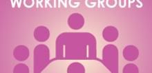 V3_cn_workinggroup_smlpro