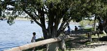 V3_walter-e-long-metropolitan-park-1848281