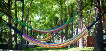 Small2_hammocks2