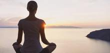 Small2_meditation_goleman