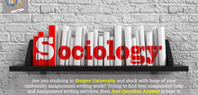 Small2_sociology_assignment_help