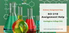 Small2_sci_210_assignment_help