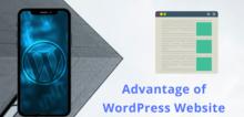 Small2_advantage-of-wordpress-website-1