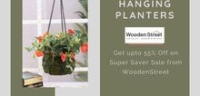 Small2_hanging_planters